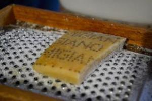 Authentic Parmigiano Reggiano from Reggio Emillia region